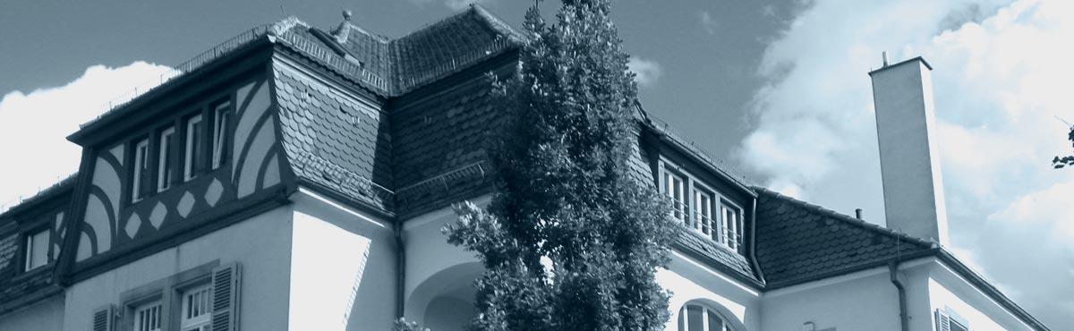 Villa-2_1080_crop_steelblue